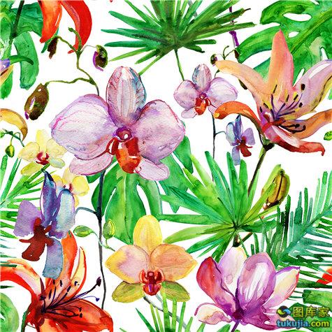 花纹 花朵 花瓣 水彩画 鲜花 花朵背景 水彩背景 盛开鲜花 鲜花背景 JPG557