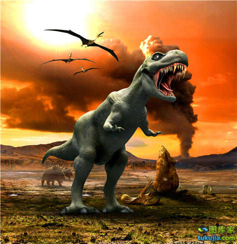 恐龙 霸王龙 食肉恐龙 食草恐龙 恐龙图片 恐龙素材 恐龙标本 JPG1126