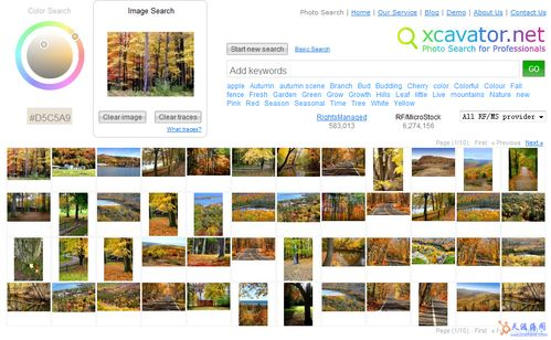 sv8r41zd 八款通过颜色搜索图片的搜索服务
