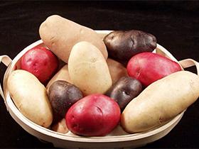 土豆减肥吗?带你看看十个真相。