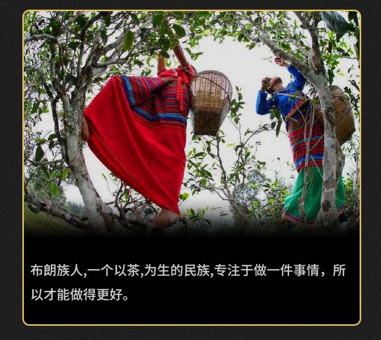 1016茶化石_05.jpg