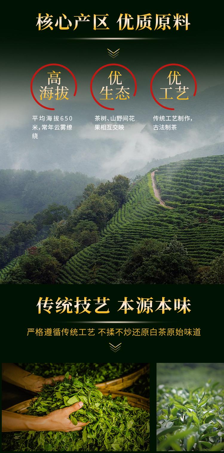 老白茶_03.jpg