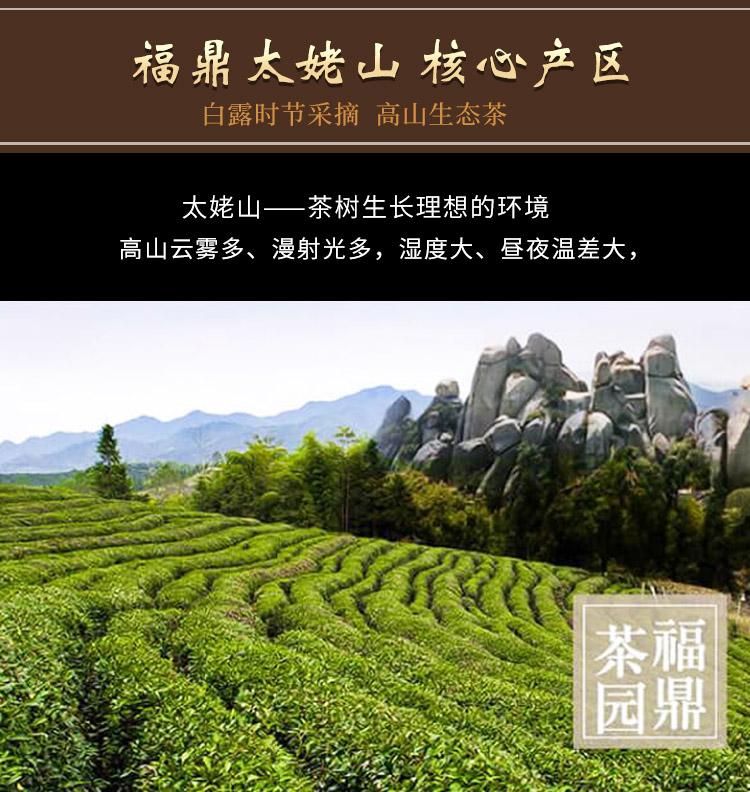 白露茶_03.jpg