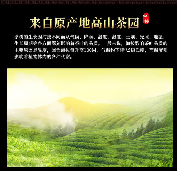 太平猴魁1_03.jpg