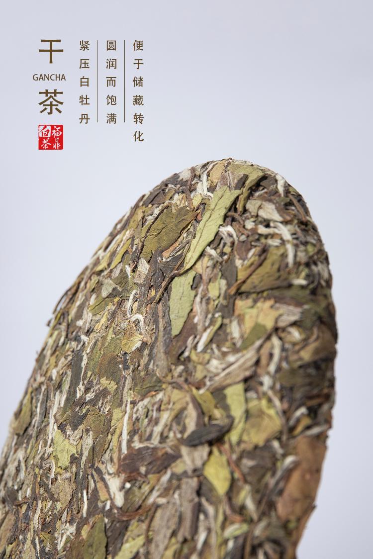 2019高山牡丹_05.jpg