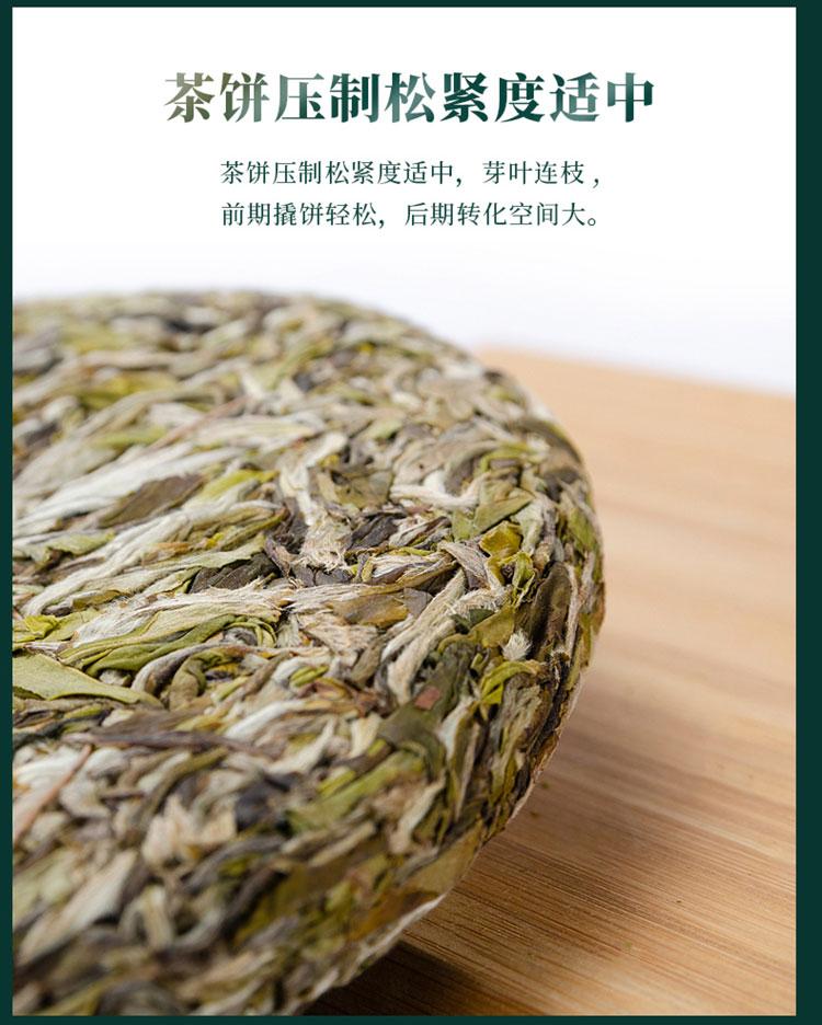 知春牡丹王3_09.jpg
