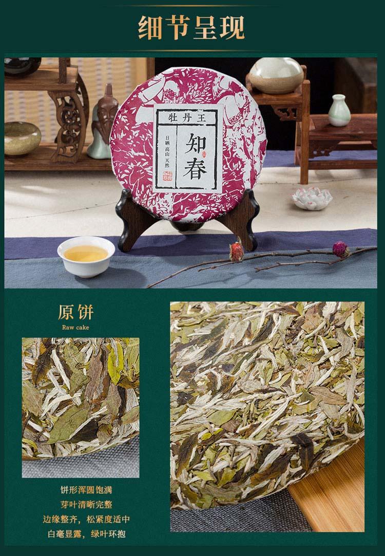 知春牡丹王3_12.jpg