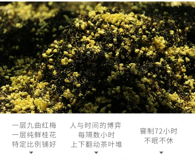 九曲红梅改_11.jpg