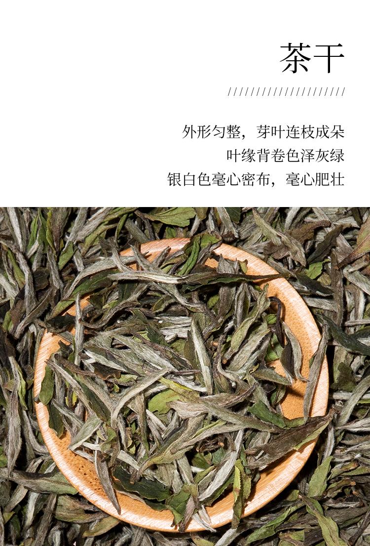 2019牡丹王_06.jpg