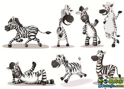卡通动物 小动物 家禽 野生动物 可爱动物 宠物 矢量576