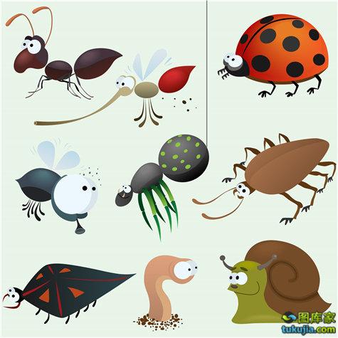 卡通昆虫 蝴蝶 蜜蜂 金龟子 飞虫 矢量21
