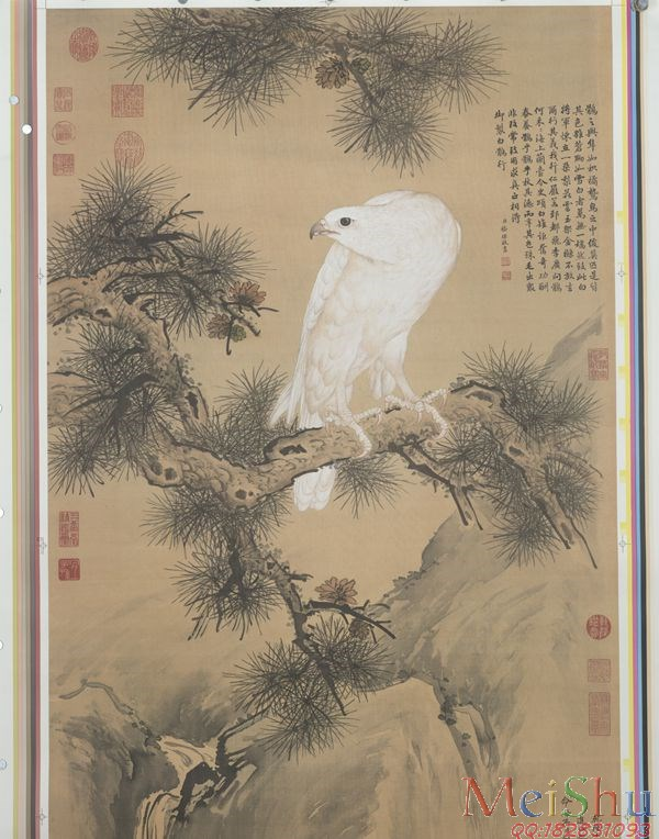 GH6085104古画花鸟鲜花卉立轴图片-352M-9840X12535