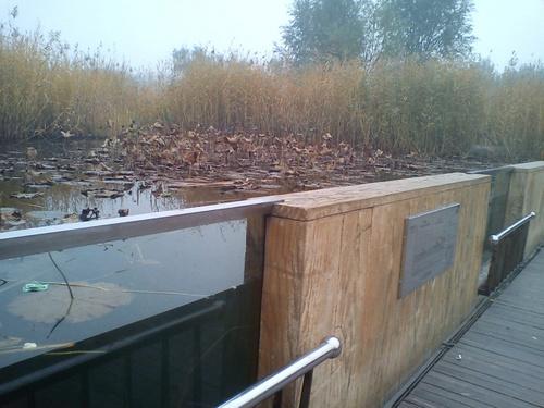 奥林匹克森林公园沉水廊道