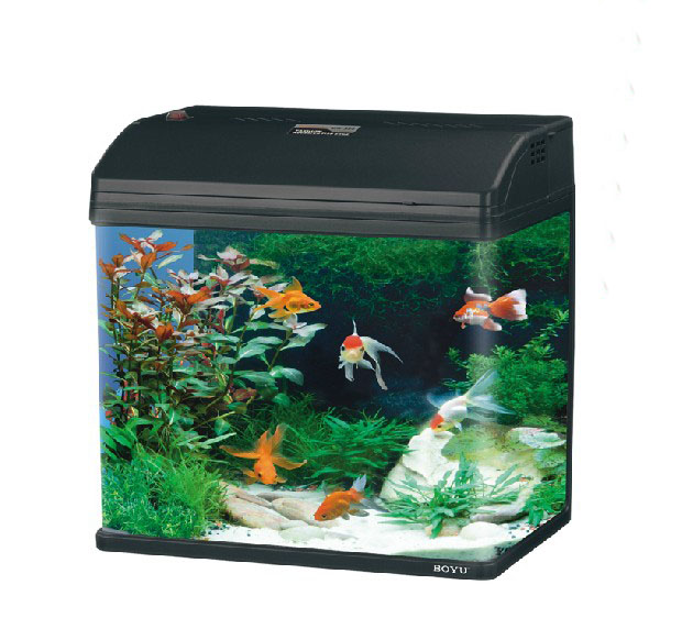 Mr 418 37l glass enclosed small ecological gifts aquarium for Small glass fish tank