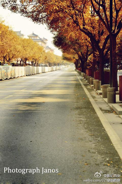 深秋初冬的西大街