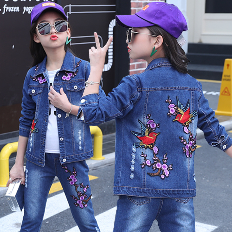 1699d5ed8 2019 Baby Girl Clothes 2018 Autumn Girls Embroidery Cowboy ...