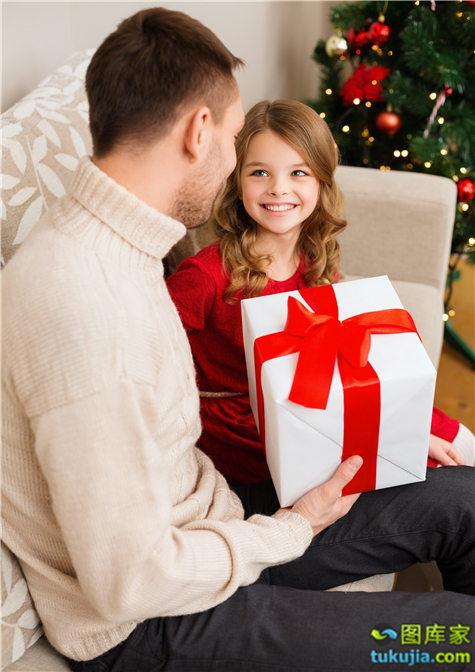 家庭圣诞节 (6)