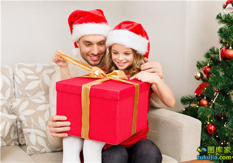 家庭圣诞节 (11)
