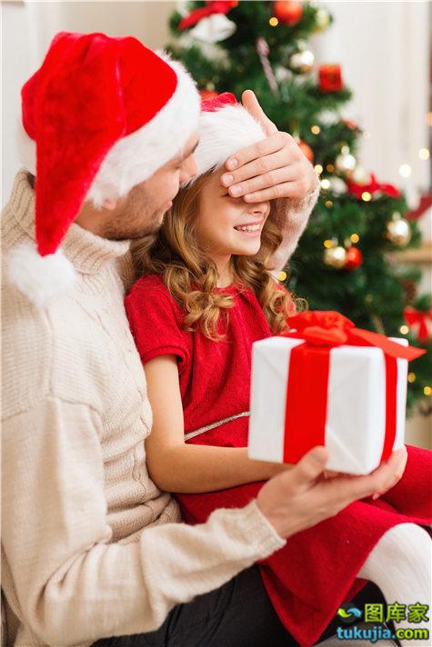 家庭圣诞节 (1)