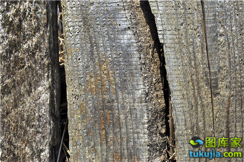 Designtnt-textures-grunge-wood-7