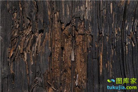 Designtnt-textures-grunge-wood-5